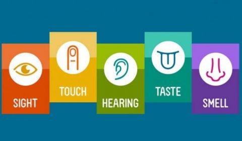 Resources: The Sensory Profile
