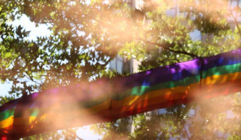 Pride: A month of celebration, remembrance and reflection